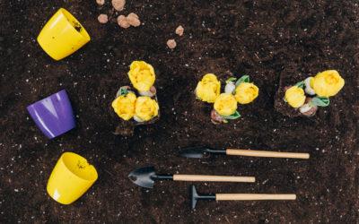 3 Easy Ideas For A Charming Garden