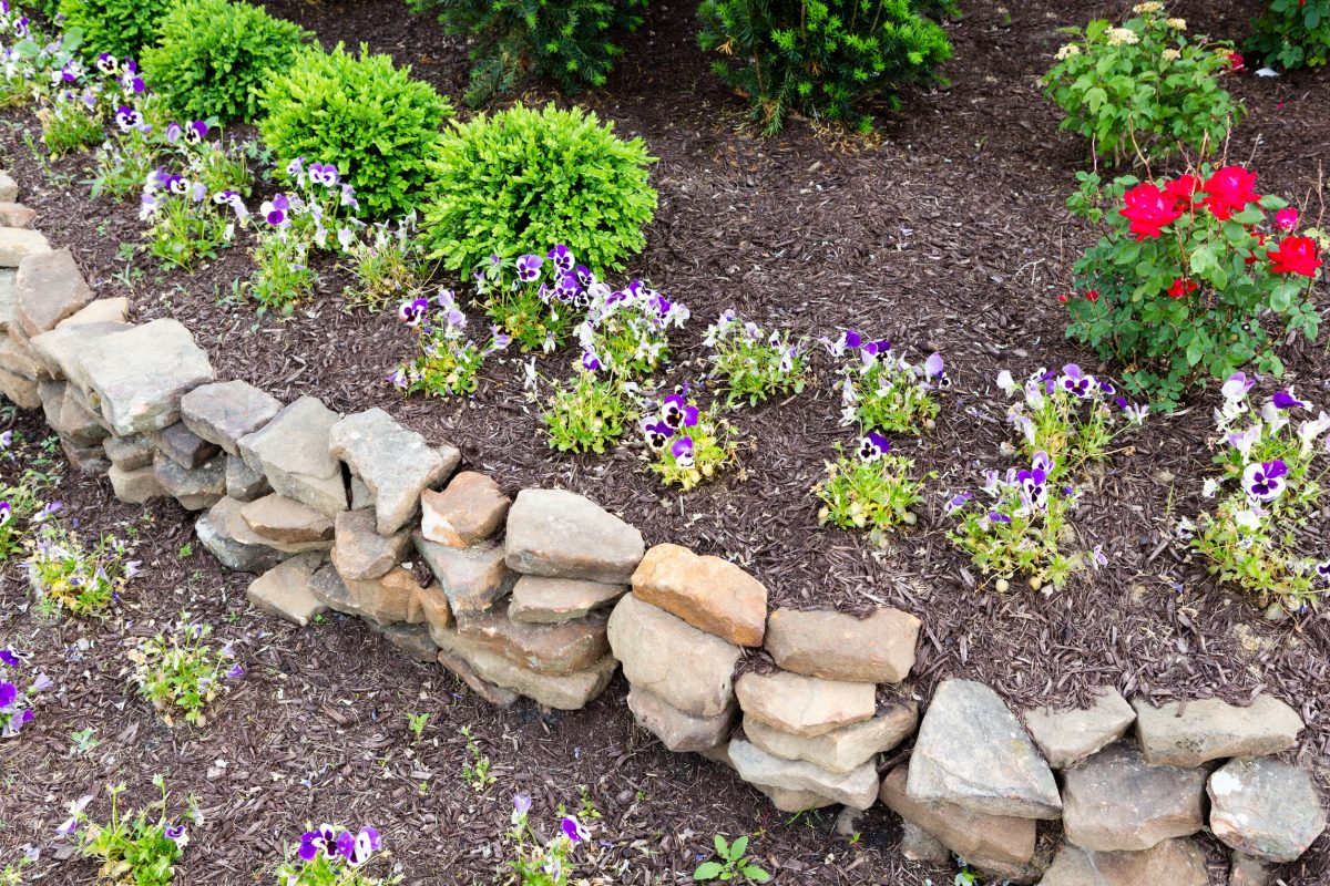 What Landscaping to Plant in Summer